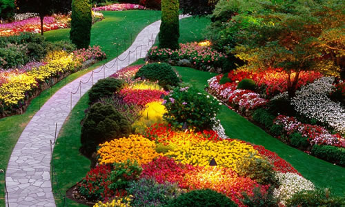 Landscape Design Richmond Va Arbor Tree Care